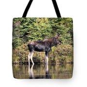 Moose_0609 Tote Bag