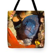 Moray And Starfish Tote Bag