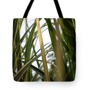 More Tall Grass Tote Bag