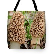 Morel Twins Tote Bag
