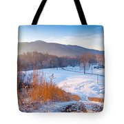Morgan County Tennessee Tote Bag