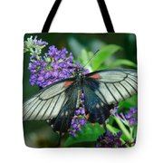Mormon Butterfly Tote Bag