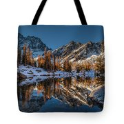 Morning At Horseshoe Lake Tote Bag by Mike Reid