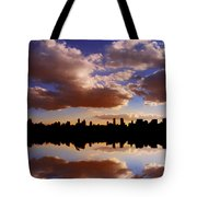Morning At The Reservoir New York City Usa Tote Bag