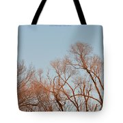 Morning Coloured In Fall Tote Bag