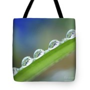 Morning Dew Drops Tote Bag