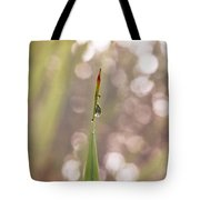 Morning Dew On A Grass Tote Bag