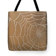 Morning Dew On Web Tote Bag
