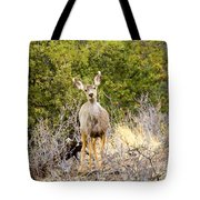 Morning Does Tote Bag