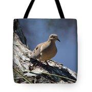 Morning Dove Tote Bag