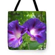 Morning Glory Couple Or 2 Purple Ipomeas Tote Bag