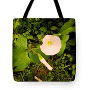 Morning Glory Glow Tote Bag