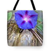Morning Glory On The Fence Tote Bag