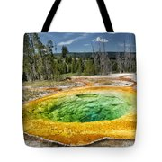 Morning Glory Pool Tote Bag