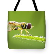 Morning Hoverfly Tote Bag