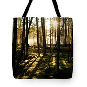Morning In Canoe Country Tote Bag