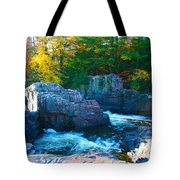 Morning In Eau Claire Dells Tote Bag