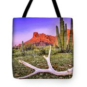 Morning In Organ Pipe Cactus National Monument Tote Bag