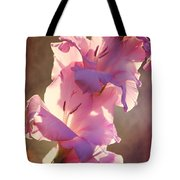 Morning Light And Shadows Tote Bag