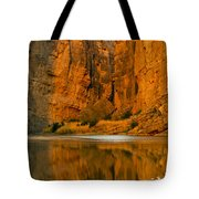 Morning Light In The Canyon Tote Bag