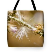Morning Lights  Tote Bag