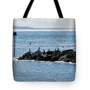 Morning Meeting - Lyme Regis Tote Bag
