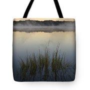 Morning Mist At Sunrise Tote Bag by David Gordon