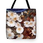Morning Mushrooms Tote Bag