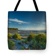 Morning On The Beach Tote Bag by Randy Hall