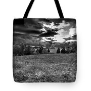 Morning On The Farm Two Bw Tote Bag