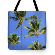Morning Palms Tote Bag by Elena Elisseeva