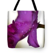 Morning Rain - Orchid Photography By Sharon Cummings Tote Bag