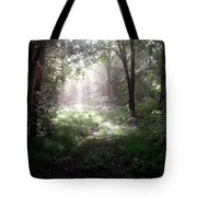 Morning Rays Tote Bag by Melissa Krauss