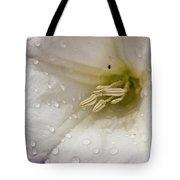 Morning Shower Tote Bag