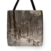 Morning Snow Path Tote Bag