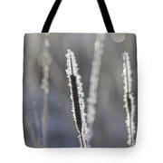 Morning Sparkle Tote Bag