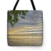 Morning Storm Tote Bag