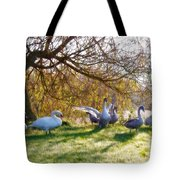 Morning Stretch - Impressions Tote Bag