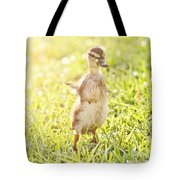 Morning Stretch Tote Bag