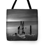 Morning Suds 16x9 Bw Tote Bag