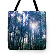 Morning Sun Rays Tote Bag