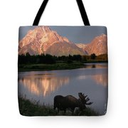 Morning Tranquility Tote Bag by Sandra Bronstein