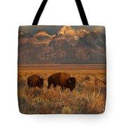 Morning Travels In Grand Teton Tote Bag