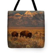 Morning Travels In Grand Teton Tote Bag by Sandra Bronstein