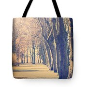 Morning Trees Tote Bag