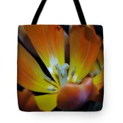 Morning Tulip Tote Bag