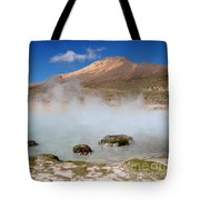 Morning Vapours Tote Bag