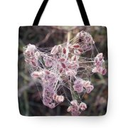Morning With A Spider Tote Bag