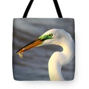 Morning's Catch Tote Bag