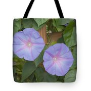 Morning's Glory Tote Bag